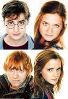 mugglesine potter