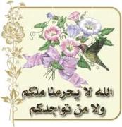 الترحيب بالعضو /حلم المصري 2230071417