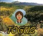 toguz