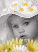 ~زهرة الربيع~