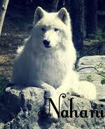 Náhani