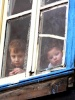 Balatta bi evin penceresinden şaşkın gözlerle dışarıyı izleyen musum kardeşler