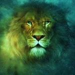 lionvert