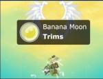 -Trims-