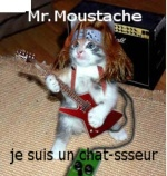 MrMoustache