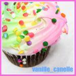 vanille_canelle