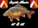 carpiste 67