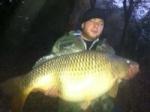 Le poisson 3323-78