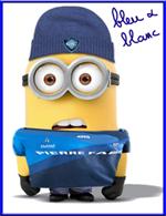 bleuetblanc