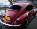 Bugman