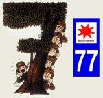 Tatoo77