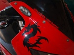 Dragon-dragon