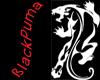 BlackPuma