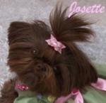Fairy Tail Josette