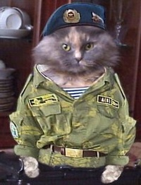 Sgt.Pattesdevelours