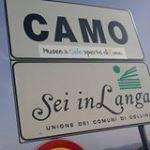 Pro Loco Camo