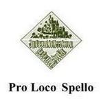 ProSpello