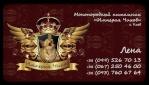 Щенки Чихуахуа на продажу 5135-31