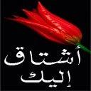 أحمد العطار السلفي