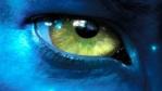 Le bandeau sur les yeux 329-9