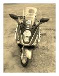 haudycarlos666