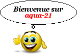 Bonjour 515863