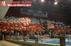 Fenomenul Ultras in alte sporturi Crvena10