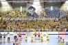Fenomenul Ultras in alte sporturi Korona10
