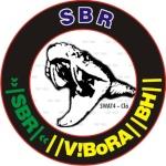 V!BoRA_BH