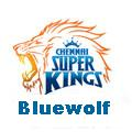 _CsK_Bluewolf