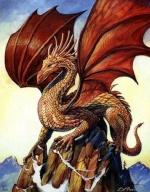 dragonvigo