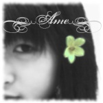 hageshii_AME