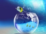 Captain_fish