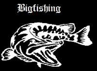 Bigfishing