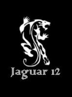 Jaguar12airsoft