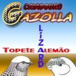 Gazolla