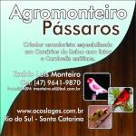 Agromonteiro
