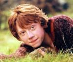 François Weasley