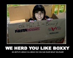 Boxxy Lover