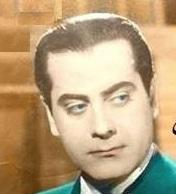ولاء سيد مصطفى