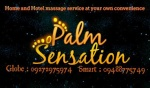 palmsensation32