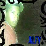 alfy1