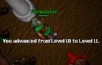 Fermantor