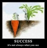 Success, Its not always what it seems