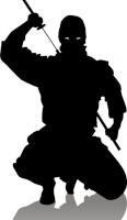 ninjaTheassasin