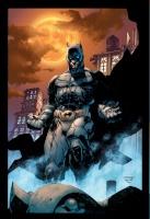 Admin Batman