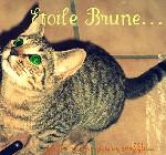 Etoile Brune