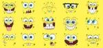 Patsponge