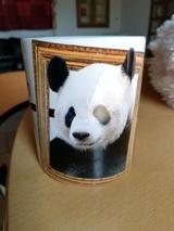 Panda4530