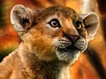 Lionceaudor